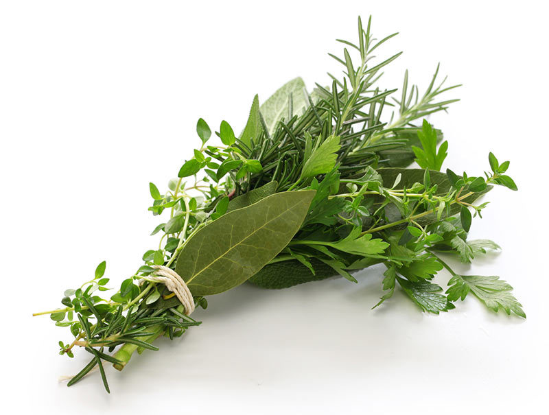 fresh herb bunch